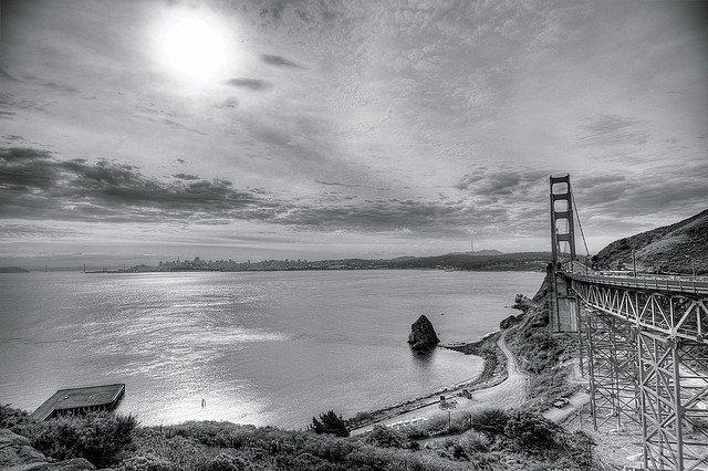 City spotlight: San Francisco Global Grasshopper