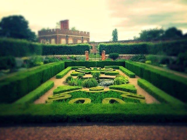 Summer at Hampton Court gardens