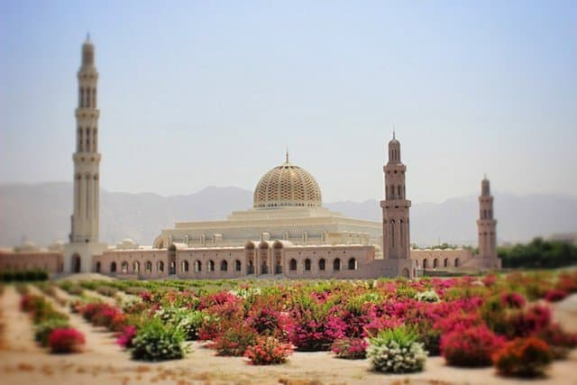 Exploring Oman - Muscat and beyond Global Grasshopper