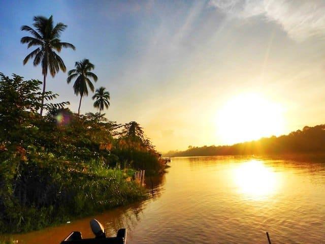 Jungle-River-boat