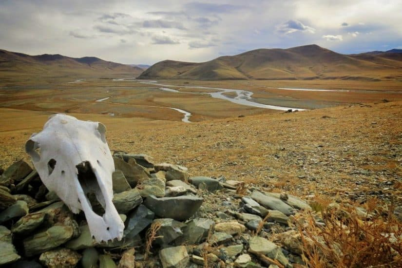 A journey from Russia to China on the Trans-Mongolian Railway