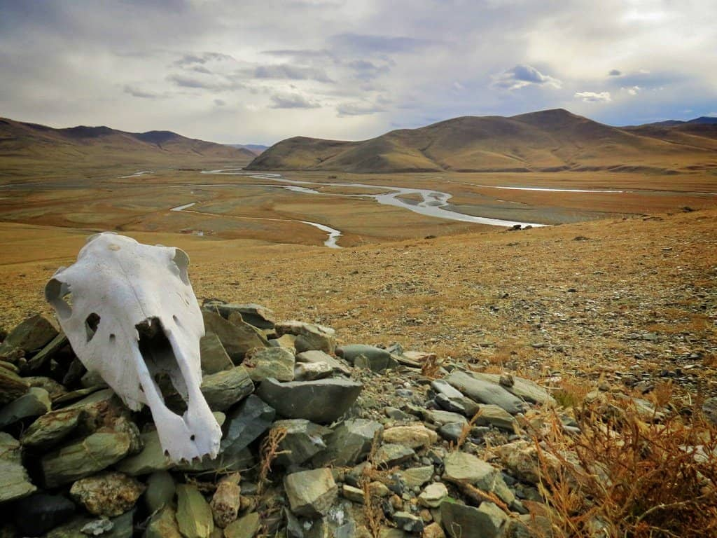 In BIG Pictures: the hauntingly beautiful landscapes of Mongolia Global Grasshopper
