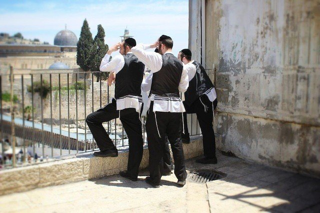 Travelling to Israel with the boutique tour operator Vibe Israel Global Grasshopper