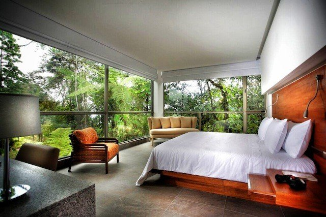 Mashpi Lodge - a unique stay in the Ecuadorian jungle Global Grasshopper