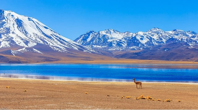 Chile Lagoons