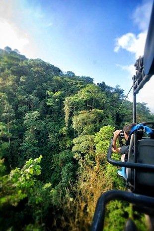 Sky Train jungle