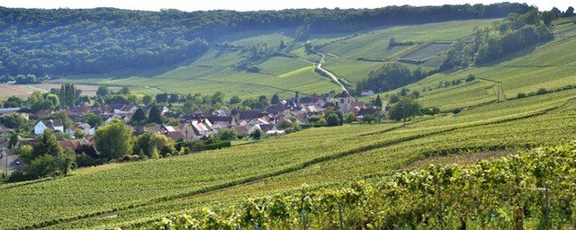 Things to do in beautiful Picardy, France Global Grasshopper