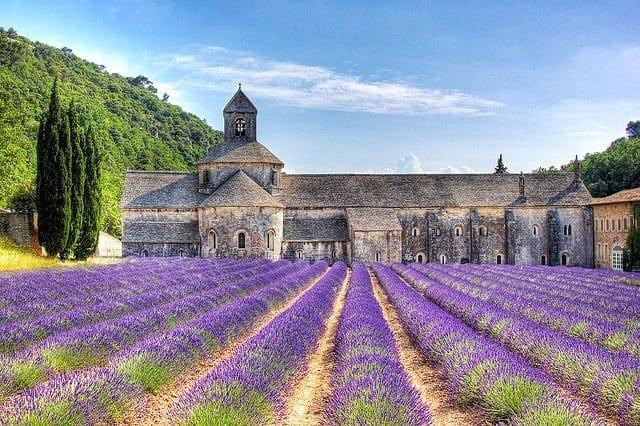 Abbaye-Senanque