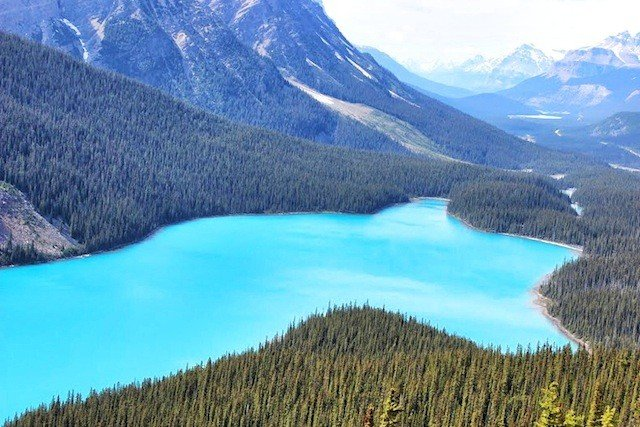 10 of the most beautiful National Parks in North America Global Grasshopper