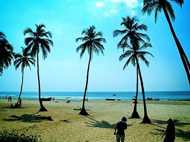 Goa activities