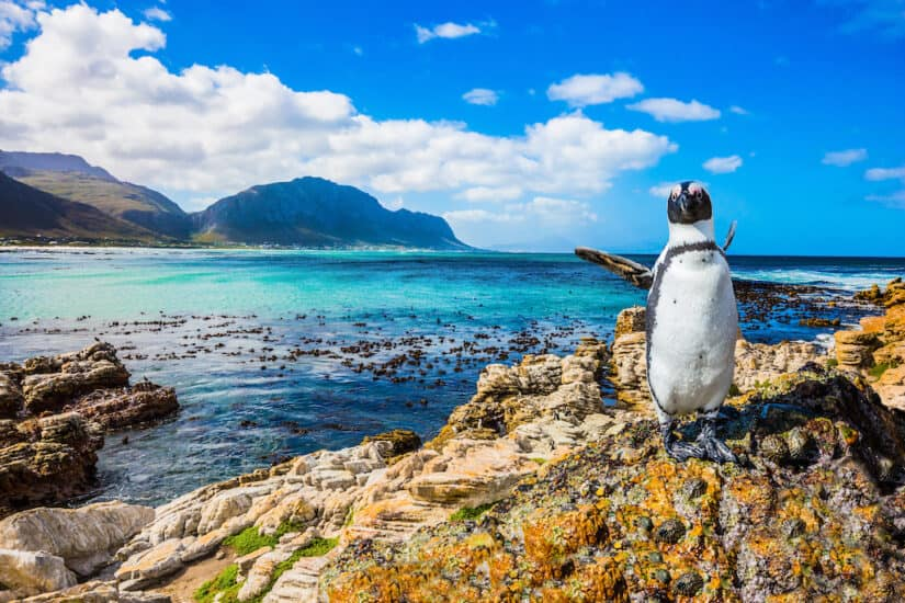 The most beautiful places to visit in South Africa