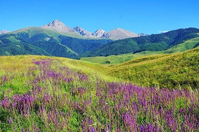 1. landscape kyrgyzstan