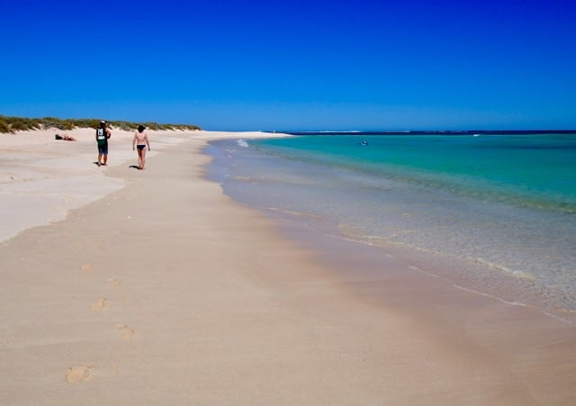 6 cool things to do near Ningaloo Reef, Western Australia Global Grasshopper