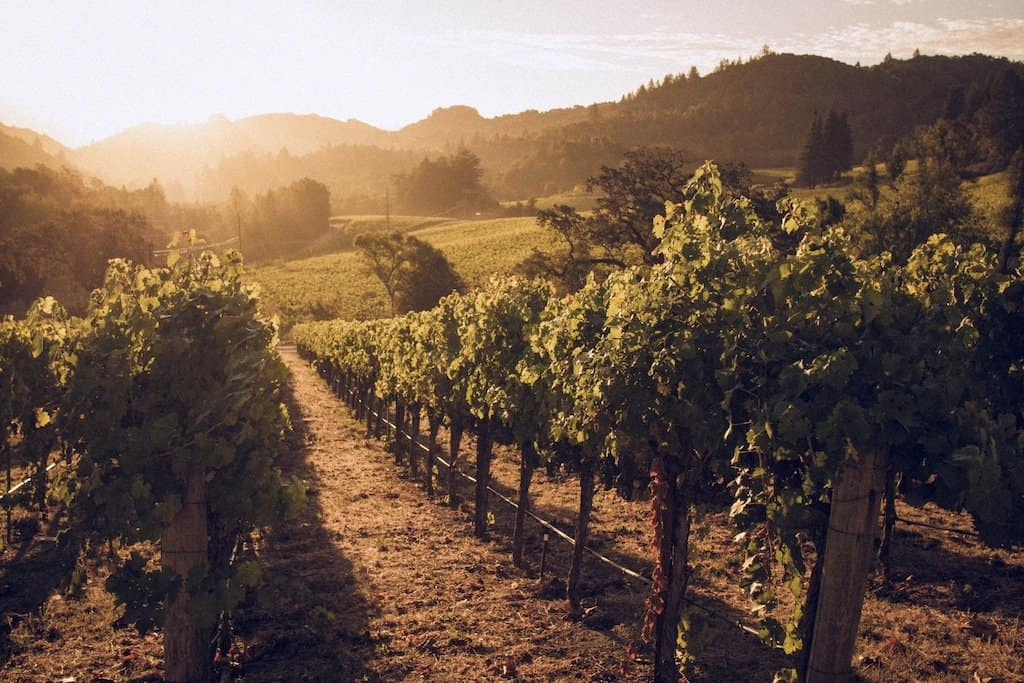 7 of the most beautiful wine tasting locations for travel snobs Global Grasshopper