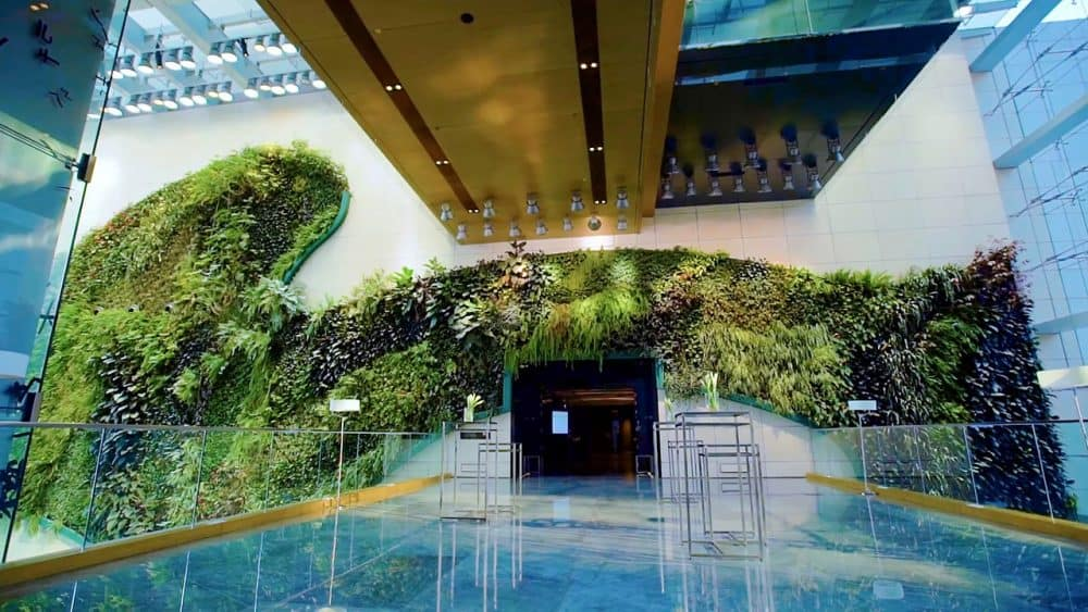 Top 15 cool and unusual hotels in Hong Kong Global Grasshopper