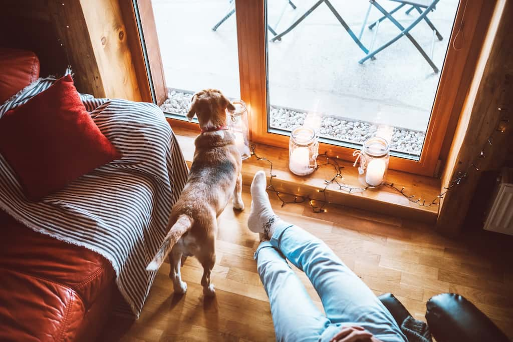 Top 15 Dog friendly hotels in Cotswolds