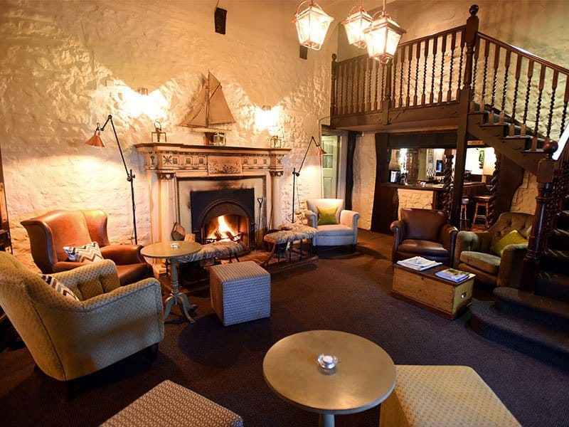 Top 12 dog-friendly hotels in Norfolk Global Grasshopper