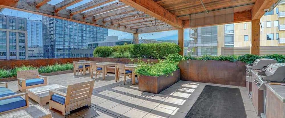 Top 15 dog-friendly hotels in Portland Global Grasshopper