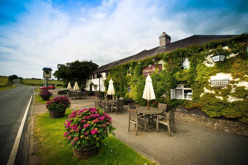 Top 15 dog friendly hotels in Wales Global Grasshopper