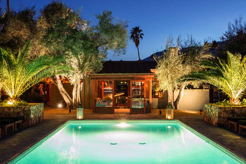 Top 15 dog friendly hotels in Palm Springs Global Grasshopper