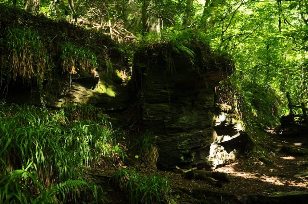 St Nectans Glen, Cornwall - England's beautiful hidden gem Global Grasshopper