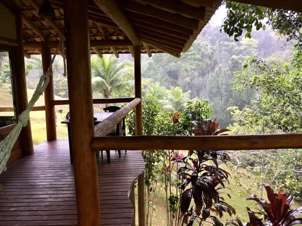 Spirit Vine, Brazil - a stay in an Ayahuasca Retreat Center Global Grasshopper