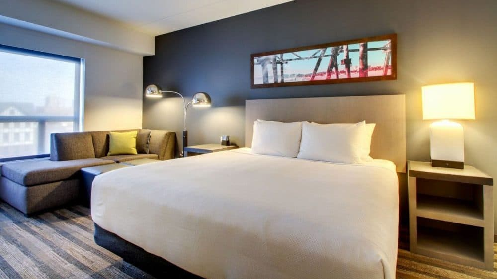 Top 15 dog friendly hotels in Chicago Global Grasshopper