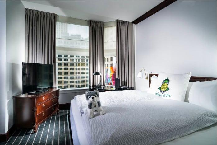 Pet friendly hotels Chicago