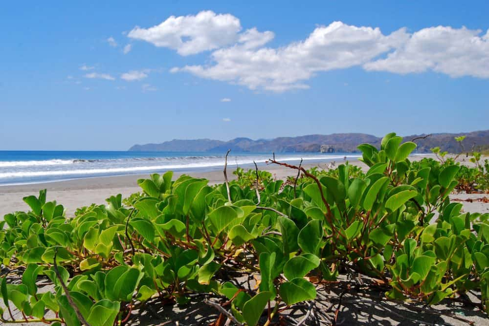 8 under-the-radar places to visit in Costa Rica Global Grasshopper