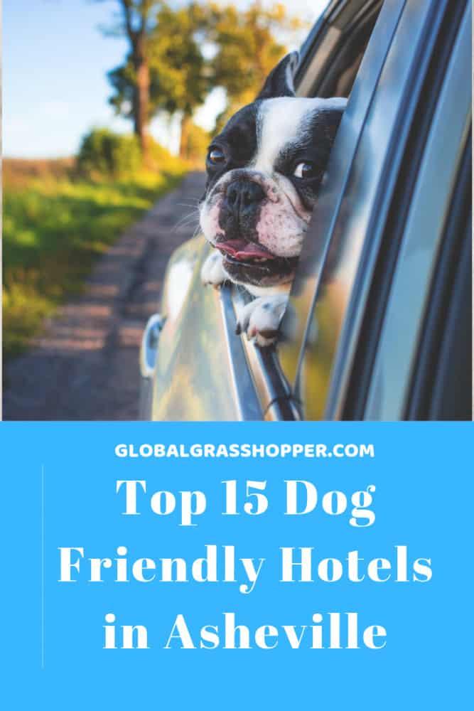 Top 15 Pet friendly hotels in Asheville Pinterest