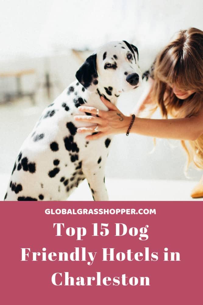 Pinterest dog friendly hotels in Charleston