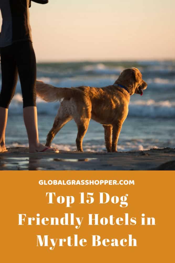 Pinterest - Top 15 Dog friendly hotels in Myrtle Beach
