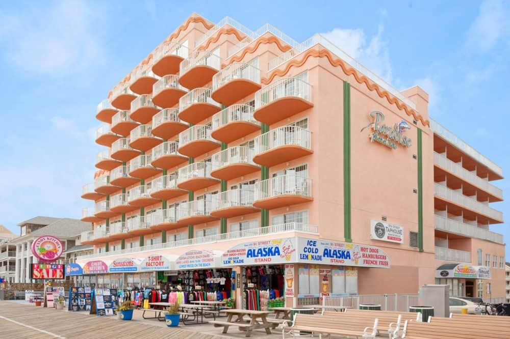 Top 15 dog-friendly hotels in Ocean City, Maryland Global Grasshopper