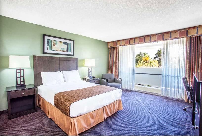 Low budget dog friendly hotel in Monterey