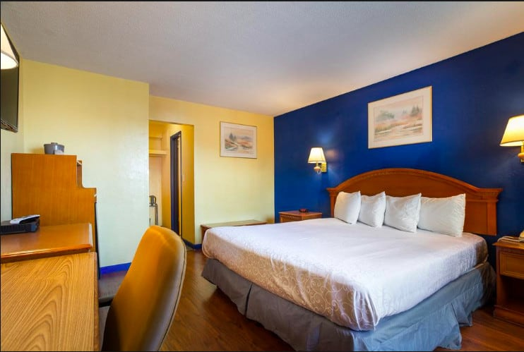 Relaxed pet friendly hotel in Santa Cruz