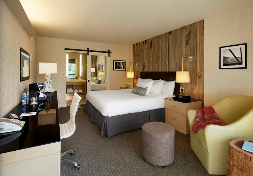 Contemporary Pet friendly hotel Santa Cruz
