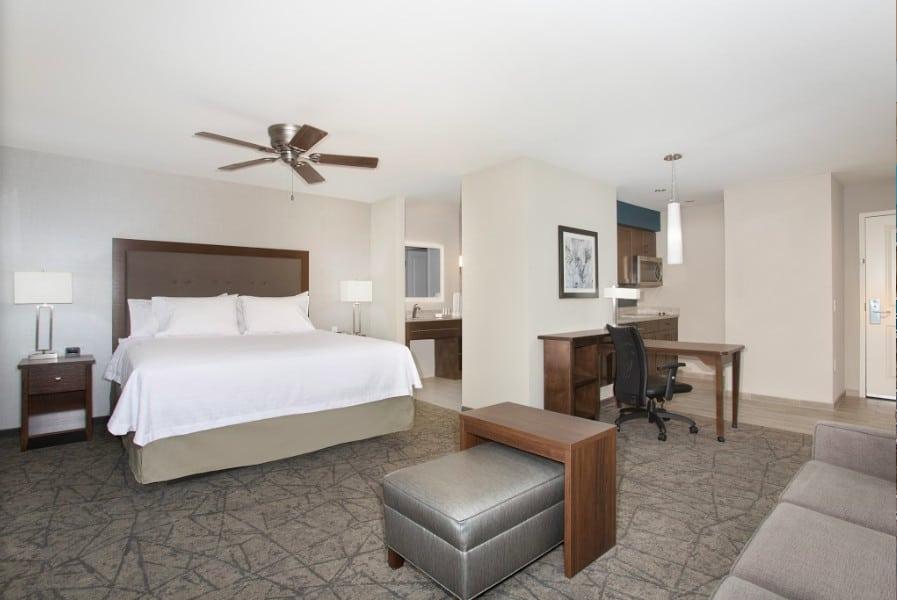 Modern dog friendly hotel in Las Vegas