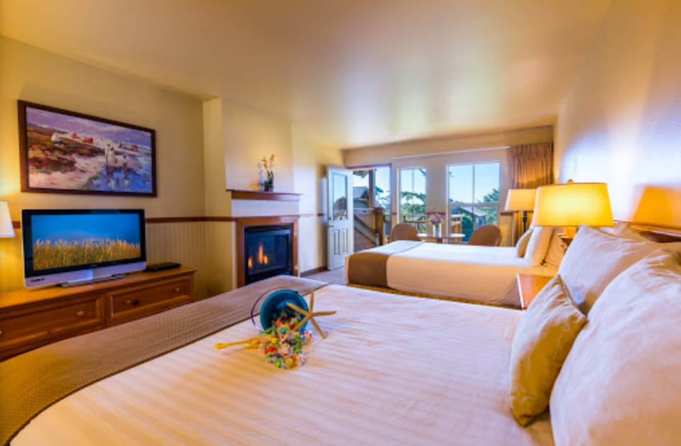 Pet friendly hotel in Tolovana Beach State Park