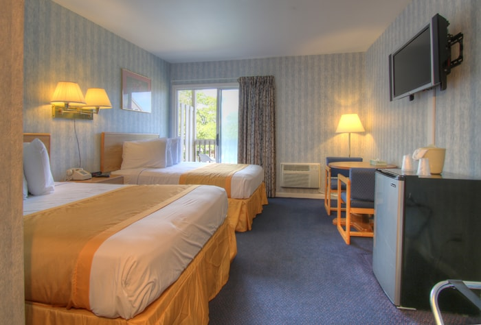 Top 15 dog-friendly hotels in Cape Cod 2020 Global Grasshopper