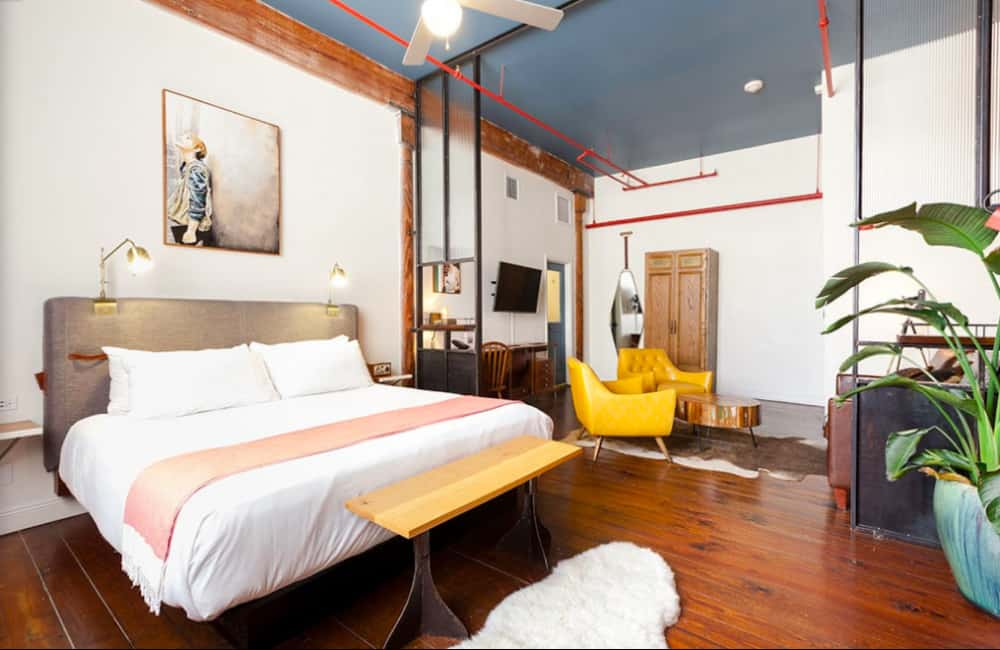 Trendy dog friendly hotel in New Orleans