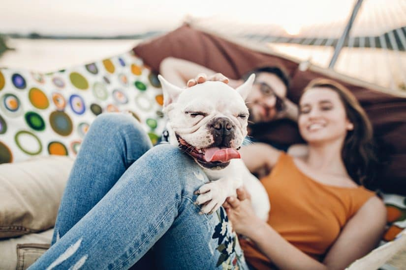 best dog friendly hotels in Oregon Coast