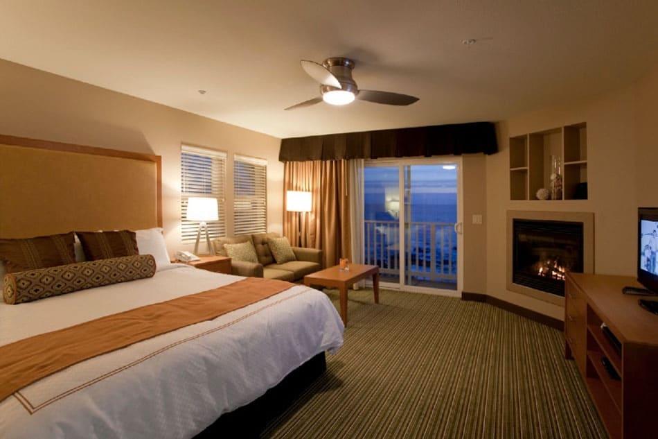 Top 15 dog-friendly hotels along the Oregon Coast Global Grasshopper
