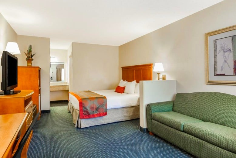 dog-friendly Flagstaff accommodation