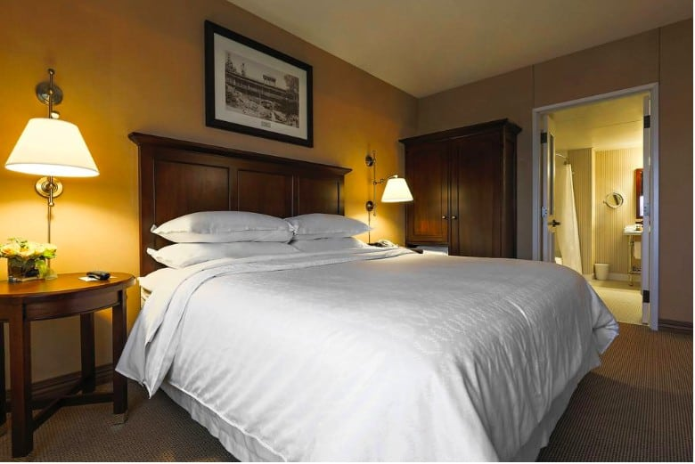 Pet friendly central hotel in Duluth
