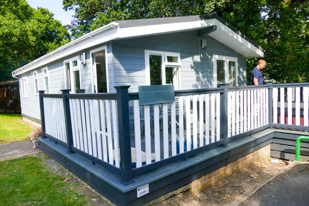A dog-friendly holiday in the New Forest (with Shorefield) Global Grasshopper