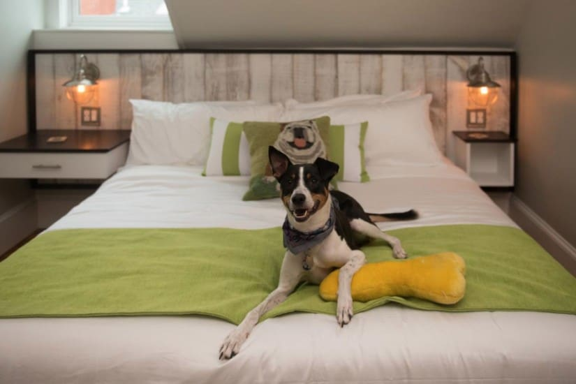 Lost property left behind in hotels