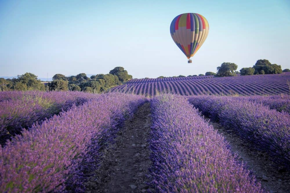 Launch of our 'Magic of France' boutique tour with BornWild Global Grasshopper