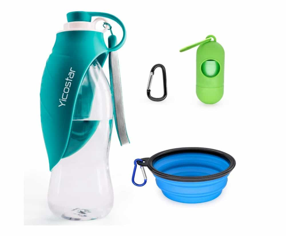 Travelling with a dog - water bottle