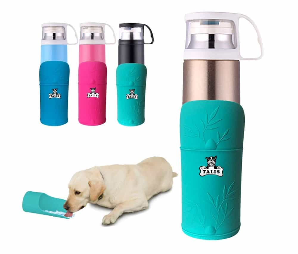 best portable dog water bottles