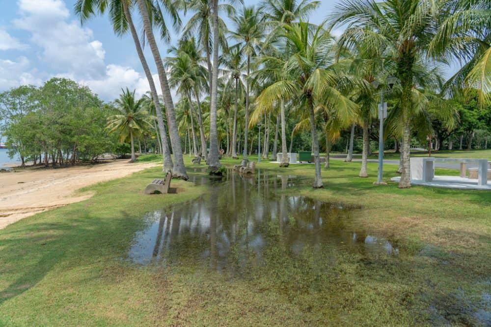 Pasir Ris Park Singapore